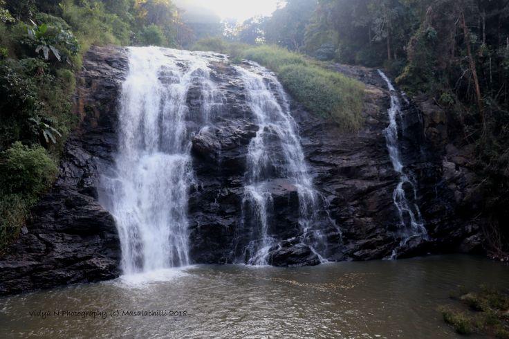 Abbi Falls 2.jpg